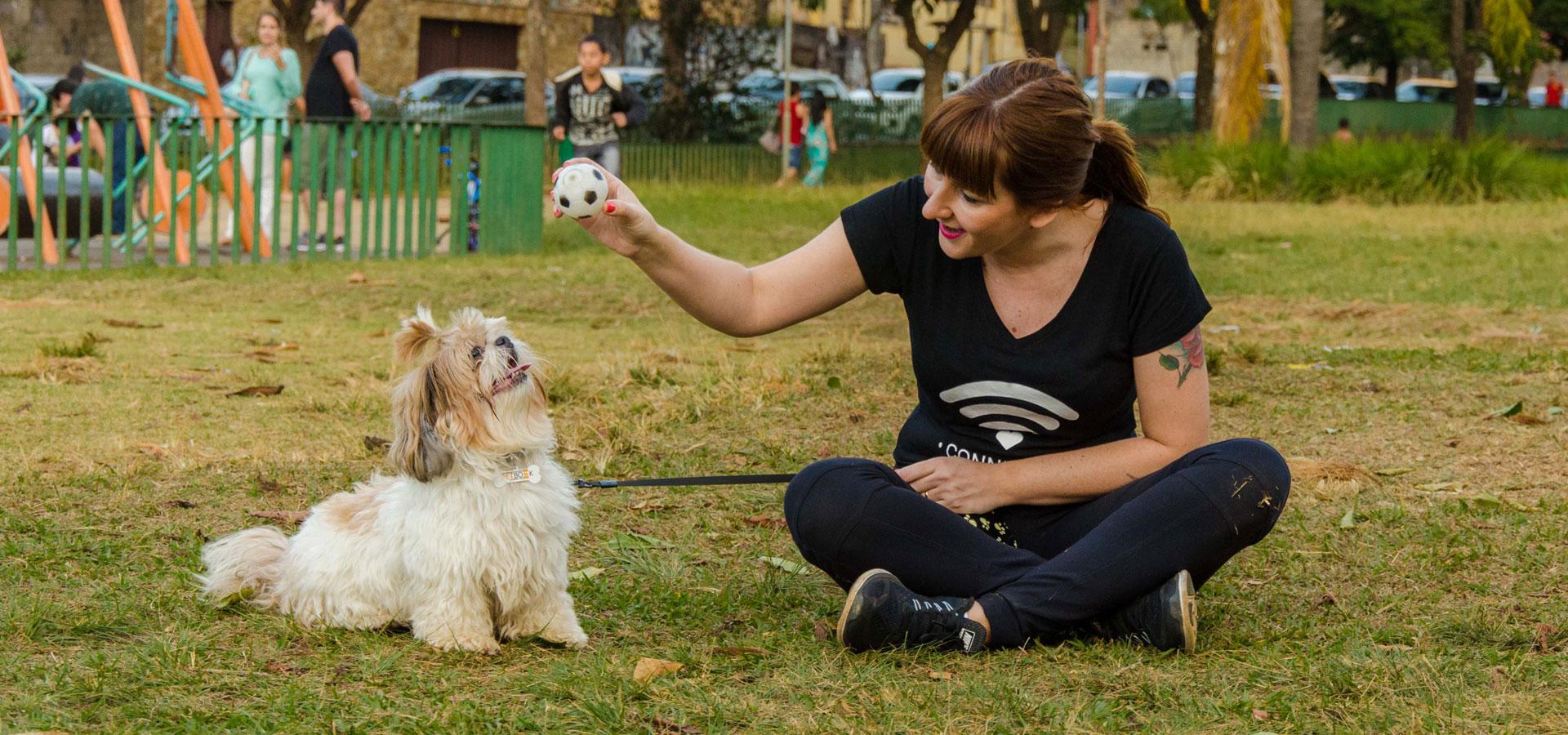 Banner - Serviço de Pet Sitting